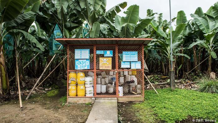 Pesticide cans at a shack in a banana plantation in Ecuador
