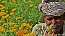 Titel: Global Ideas/Evolve Rechte: Evolve Aufgenommen: August 2017, Dehradun, Indien Schlagwörter: Global Ideas, Evolve, India, plantable pencils, social entrepreneurship