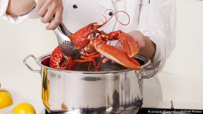 Zubereitung von Hummer (picture-alliance/Food&Drink Photos)