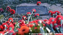 14.01.2018 *** Rote Nelken liegen am 14.01.2018 an der Gedenkstätte der Sozialisten auf dem Zentralfriedhof Friedrichsfelde in Berlin zum Gedenken an die 1919 ermordeten Kommunistenführer Rosa Luxemburg und Karl Liebknecht. Foto: Britta Pedersen/dpa +++(c) dpa - Bildfunk+++ | Verwendung weltweit