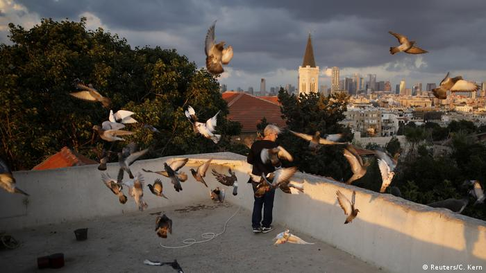 Мальчик кормит на крыше голубей
