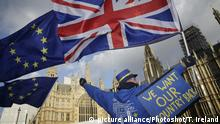 UK Brexit - House of Commons - EU Flagge (picture alliance/Photoshot/T. Ireland)