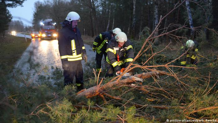 Rescue workers remove a tree that fell on a road