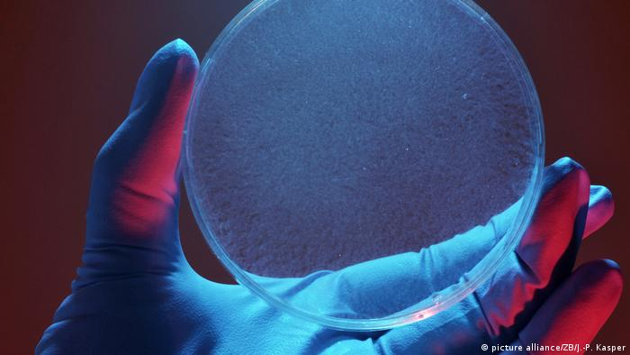 Deutschland Symbolbild Nanocellulose
