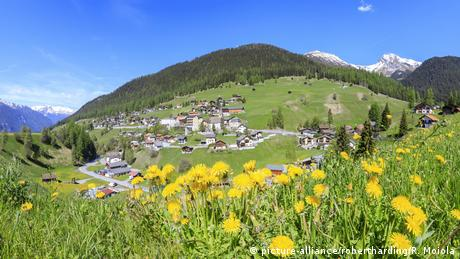 Idyllic view over spring meadows to the village of Davos in the canton of Graubünden, Switzerland