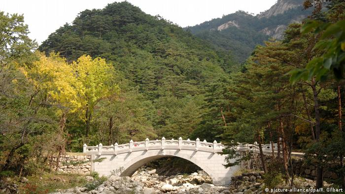 Seoraksan National Park (picture-alliance/dpa/R. Gilbert)