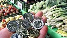 Preisanstieg liegt bei 2,3 Prozent im Januar