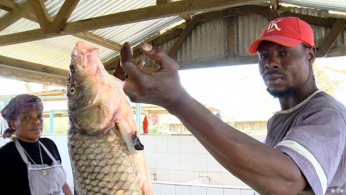 A fisherman holds up his catch