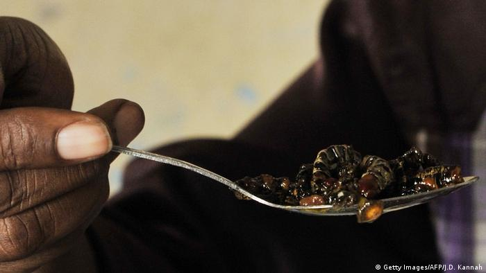 A person eats grilled caterpillars with olive oil (Getty Images/AFP/J.D. Kannah)