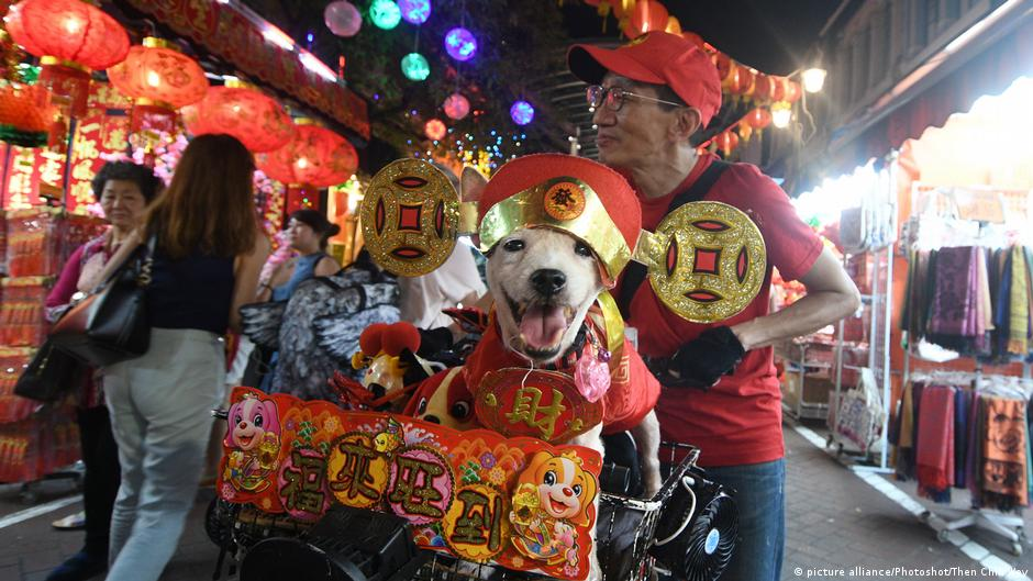「金雞」走了,「土狗」來了!《德國之聲》請香港風水師談狗年運勢