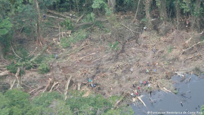 La foto, facilitada por la Fundación Neotrópica, muestra los daños en el humedal.
