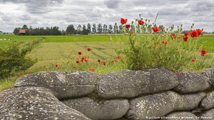 Так выглядят брусверы Первой мировой войны, которые сохранились до нашего времени. Фотография сделана в Диксмёйде в Бельгии.