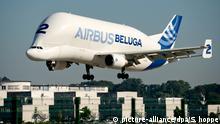 Ein Airbus Beluga landet am 06.09.2013 auf dem Werksgelände von Airbus in Hamburg-Finkenwerder. Der Airbus A300-600ST Beluga ist ein zweistrahliges Frachtflugzeug für übergroße Lasten des europäischen Herstellers Airbus S.A.S. Foto: Sven Hoppe/dpa | Verwendung weltweit