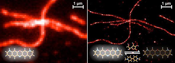 Leuchtende Proteine in einer Zelle, Blinkmikroskopie