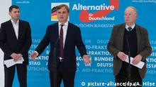 Deutschland Koalitionsvertrag in Berlin | Reaktion AfD - Bernd Baumann & Alexander Gauland