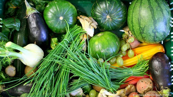 Symbolbild Frisches Gemüse