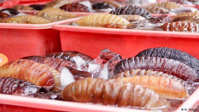 Indonesien Jakarta - Traditionelles Chinesisches Essen (M. Rijkers)