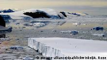 Antarktis Packeis und Treibeis