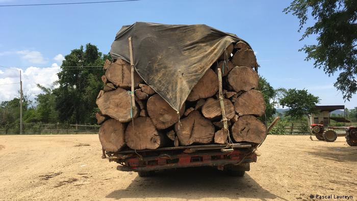 A truck filled with timber in the Aoral Wildlife Sanctuary, Cambodia