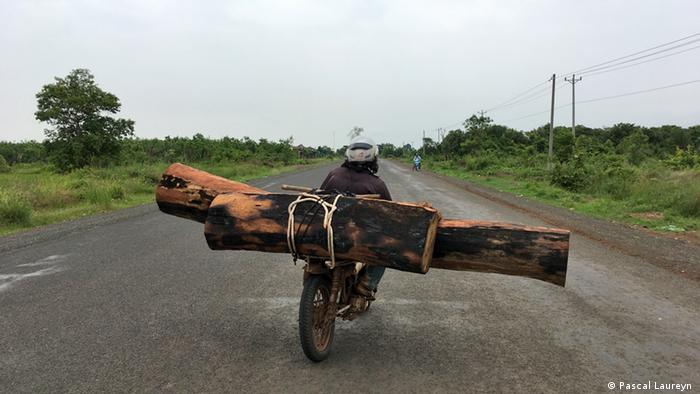 A smuggler with two trunks on his motorbike approaches the Vietnamese border from in Cambodia