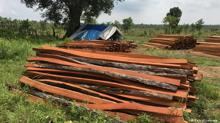A pile of red timber in Camborida close to the border with Vietnam