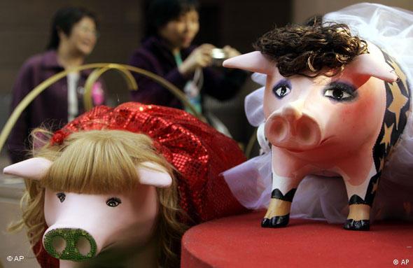 Schweine in Hongkong chinesisches Neujahr (AP)