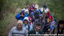 Ungarn Grenze zu Österreich - Flüchtlinge