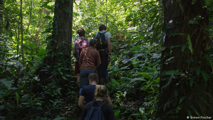 Costa Rica, students hiking through rain forest