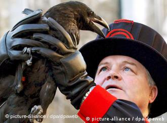 Rabenmeister Coyle hält einen Raben mit beiden Händen fest