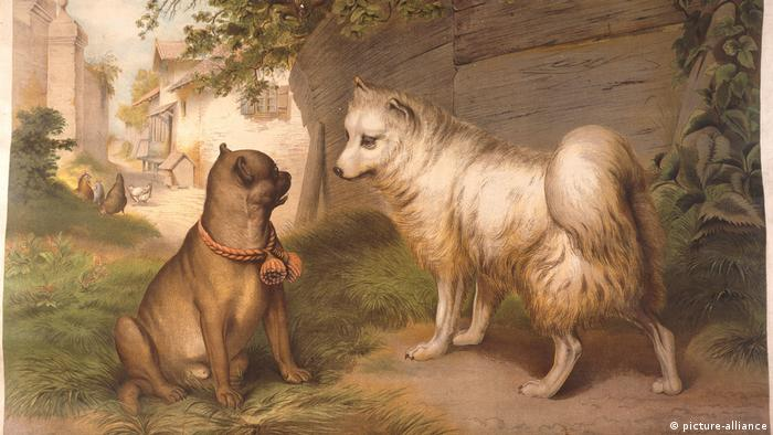 Lithography of a pug and a Spitz (picture-alliance)