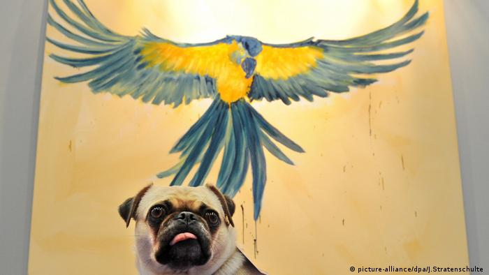 Pug sits in front of a paiting (picture-alliance/dpa/J.Stratenschulte )