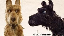 Filmstill | Isle of Dogs - Ataris Reise