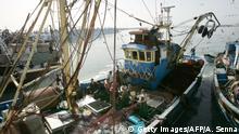 Westsahara Hafen von Laayoune