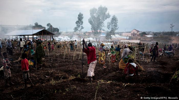 Displaced citizens in the Democratic Republic of Congo building makeshift shelters in the Ituri province
