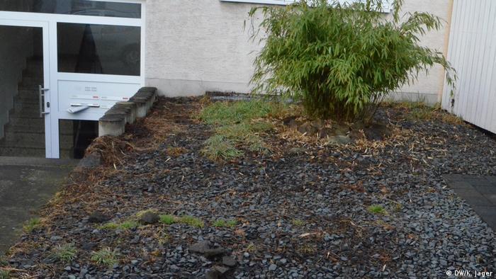 Deutschland | Schottervorgarten mit Bambus und Grasbüscheln