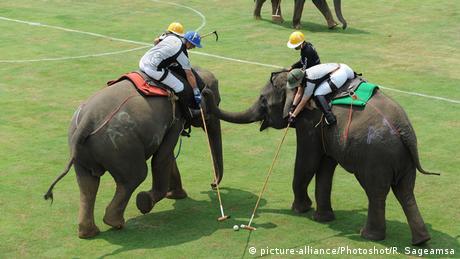 Zwei Polo-Elefanten mit Spielern und Betreuern (picture-alliance/Photoshot/R. Sageamsa)