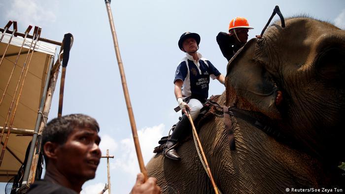 Polospieler mit seinem Schläger auf einem Elefanten (Reuters/Soe Zeya Tun)