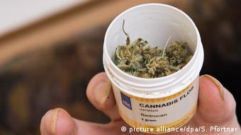 Медицинская упаковка каннабиса из аптеки в Нидерландах