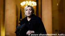 Marine Le Pen (picture-alliance/MAXPPP/T. Padilla)