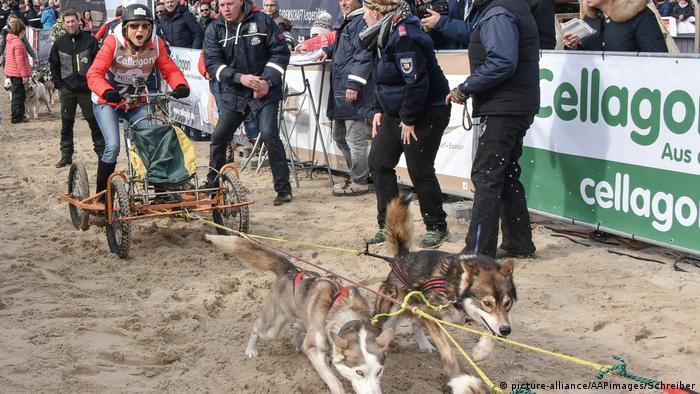 Baltic Lights dogsled race (picture-alliance/AAPimages/Schreiber)