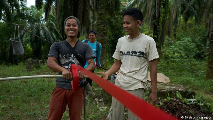 Indonesien SOS geschnitzt in Palmölplantage (Skaiste Kazragyte)