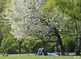 People sleeping under a tree in the Tiergarten