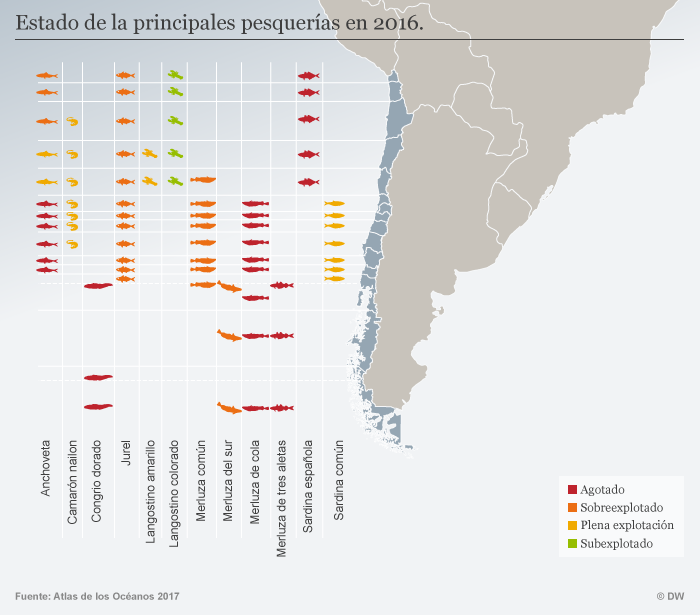 Infografik Fischerei Chile SPA