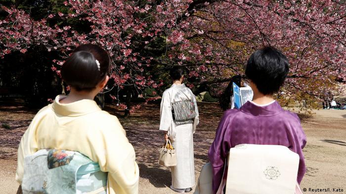 Kirschblüte in Japan im Shinjuku Gyoen National Garden in Tokyo