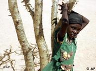 265 millones de personas pasan hambre en el África subsahariana