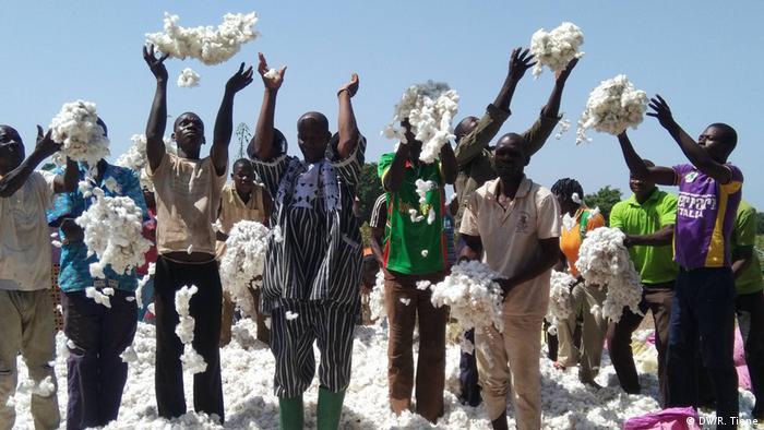 Bauern bei der Baumwoll-Ernte in Burkina Faso