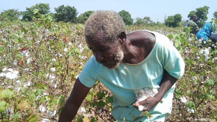 Ein Bauer erntet Baumwolle auf seinem Feld
