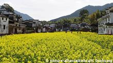 China Frühling in Wuyuan (picture-alliance/Xinhua/H. Dunhuang)