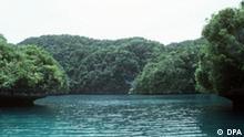 Palau Inseln im Pazifik