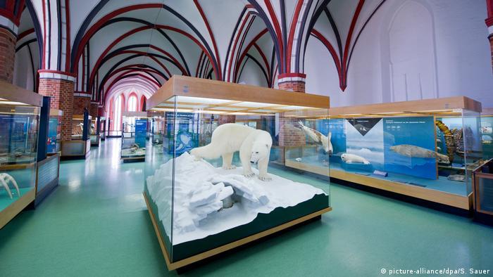 Океанографический музей в бывшей церкви в Штральзунде